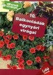 - Balkonládák egynyári virágai