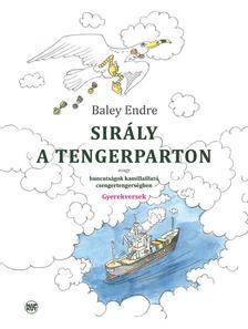 Baley Endre - Sirály a tengerparton