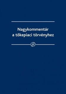 dr. Farkas Péter, dr. Száz Ágnes, dr. Tomori Erika, dr. Török Ilona, dr. Wieland Zsolt - Nagykommentár a tőkepiaci törvényhez - Nagykommentár a tőkepiacról szóló 2001. évi CXX. Törvényhez [eKönyv: epub, mobi]