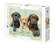 - Clementoni Puzzle 1000 Labrador kiskutyák
