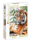 - Clementoni Puzzle 1000 Szumátrai tigris