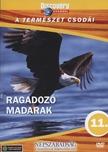 - RAGADOZÓ MADARAK - A TERMÉSZET CSODÁI - DVD - DISCOVERY