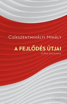 Csíkszentmihályi Mihály - A fejlődés útjai - A flow folytatása