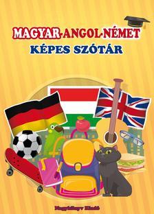 Krajnik Bíró Sára - Magyar-angol-német képes szótár