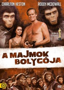 - MAJMOK BOLYGÓJA