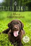 Lacey Baker - Mint a mennyországban [eKönyv: epub, mobi]<!--span style='font-size:10px;'>(G)</span-->