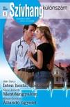 Lilian Darcy, Alison Roberts, Abigail Gordon - Szívhang különszám 23. kötet (Isten hozta, doktor úr!; Mentőangyalom; Állandó ügyelet) [eKönyv: epub, mobi]<!--span style='font-size:10px;'>(G)</span-->