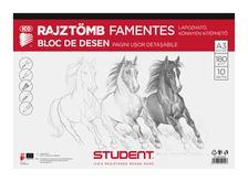 7500106001 - ICO STUDENT SKICCFÜZET A/3