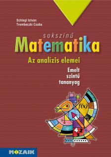 SCHLEGL ISTVÁN - MS-2313 SOKSZÍNŰ MATEMATIKA - AZ ANALÍZIS ELEMEI