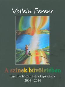 Vollein Ferenc - A színek bűvöletében - Egy ifjú festőművész képi világa 2006-2014
