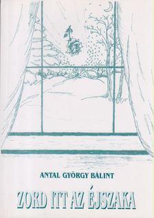 Antal György Bálint - Zord itt az éjszaka [antikvár]