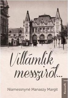 Niamessnyné Manaszy Margit - Villámlik messziről