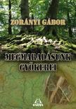 Zorányi Gábor - Megmaradásunk gyökerei