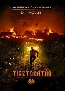 D. J. Molles - Amerika lángokban 1 - Tisztogatás