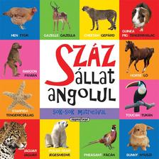 - Száz állat angolul