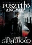 Grimwood John Courtenay - Pusztító angyal [eKönyv: epub,  mobi]