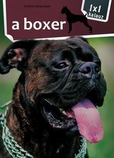 - 1x1 - A boxer