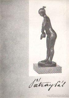 CSAP ERZSÉBET - Pátzay Pál állandó kiállítása a Budapest Galéria Kiállítóházában [antikvár]