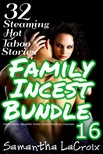 LaCroix Samantha - Family Incest Bundle #16 - 32 Steaming Hot Taboo Stories [eKönyv: epub,  mobi]