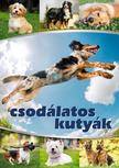 Vida Péter szerk. - Csodálatos kutyák<!--span style='font-size:10px;'>(G)</span-->