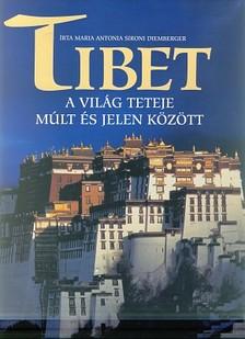 DIEMBERGER, - Tibet - A világ teteje múlt és jelen között