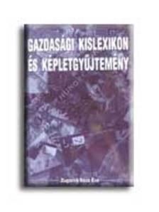 ZUGORNÉ RÁCZ ÉVA - Gazdasági kislexikon és képletgyűjtemény