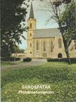 Rappai Zsuzsa - Sárospatak - Plébániatemplom [antikvár]