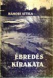 Hámori Attila - Ébredés kirakata [antikvár]