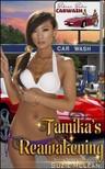 Moira Nelligar Suzie McLean, - Tamika's Reawakening - Book 6 of Bikini Babes Carwash [eKönyv: epub,  mobi]
