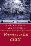Gary Chapman és Chris Fabry - Parázs a hó alatt<!--span style='font-size:10px;'>(G)</span-->