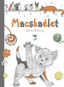 - Macskaélet - színezőkönyv