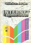 Móricz Attila - Internet a gyakorlatban [antikvár]