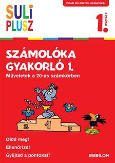 - Suli Plusz Számolóka gyakorló 1. - Műveletek a 20-as számkörben