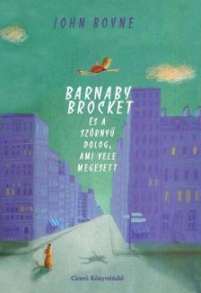 John Boyne - Barnaby Brocket és a szörnyű dolog, ami vele megesett