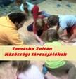 Zoltán Tamáska - KÖZÖSSÉGI TÁRSASJÁTÉKOK [eKönyv: pdf,  epub,  mobi]