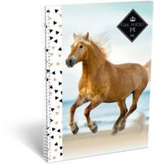 14045 - Füzet spirál A/4 kockás Geo Horse Beach 18020209