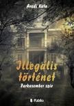 Kata Aradi - Illegális történet [eKönyv: epub, mobi]