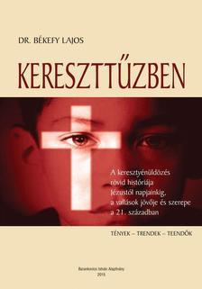 Békefy Lajos - Kereszttűzben. A keresztényüldözés rövid históriája Jézustól napjainkig, a vallások jövője és szerepe a 21. században