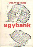 Gulay István - Agybank [antikvár]
