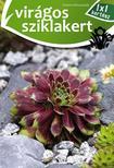 Virágos sziklakert<!--span style='font-size:10px;'>(G)</span-->