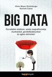 Viktor Mayer-Schönberger - Kenneth Cukier - Big data - Forradalmi módszer, amely megváltoztatja munkánkat, gondolkodásunkat és egész életünket [eKönyv: epub, mobi]