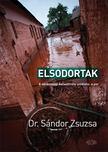 Dr. Sándor Zsuzsa - Elsodortak - A vörösiszap-katasztrófa utóélete: a per [antikvár]