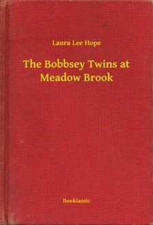 HOPE, LAURA LEE - The Bobbsey Twins at Meadow Brook [eKönyv: epub, mobi]
