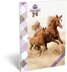13091 - Füzet spirál A/5 vonalas GEO Horse Two 17146107