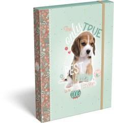 7320 - Füzetbox A/4 Pet Dog 16 16246302
