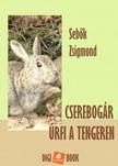 Sebők Zsigmond - Cserebogár úrfi a tengeren [eKönyv: epub, mobi]<!--span style='font-size:10px;'>(G)</span-->