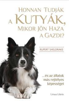 - Honnan tudják a kutyák, mikor jön haza a gazdi? - ...és az állatok más rejtélyes képességei