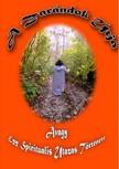 Győri Zsolt - A Zarándok Útja (Avagy egy spirituális utazás története) [eKönyv: epub,  mobi]