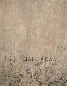 Gáll Ádám - Eltűnésmintázatok