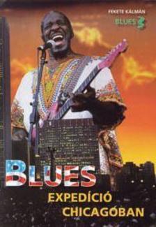 FEKETE KÁLMÁN - Blues expedíció Chicagóban #